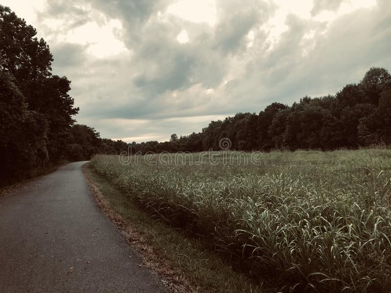 Through the weeds. A road with weeds hedging the side as the clouds loom overhead stock image