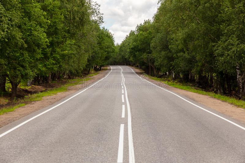Road with white markings and green trees on the side of the road. View from the middle of the highway. Summer asphalt road with white markings and green trees on stock photography