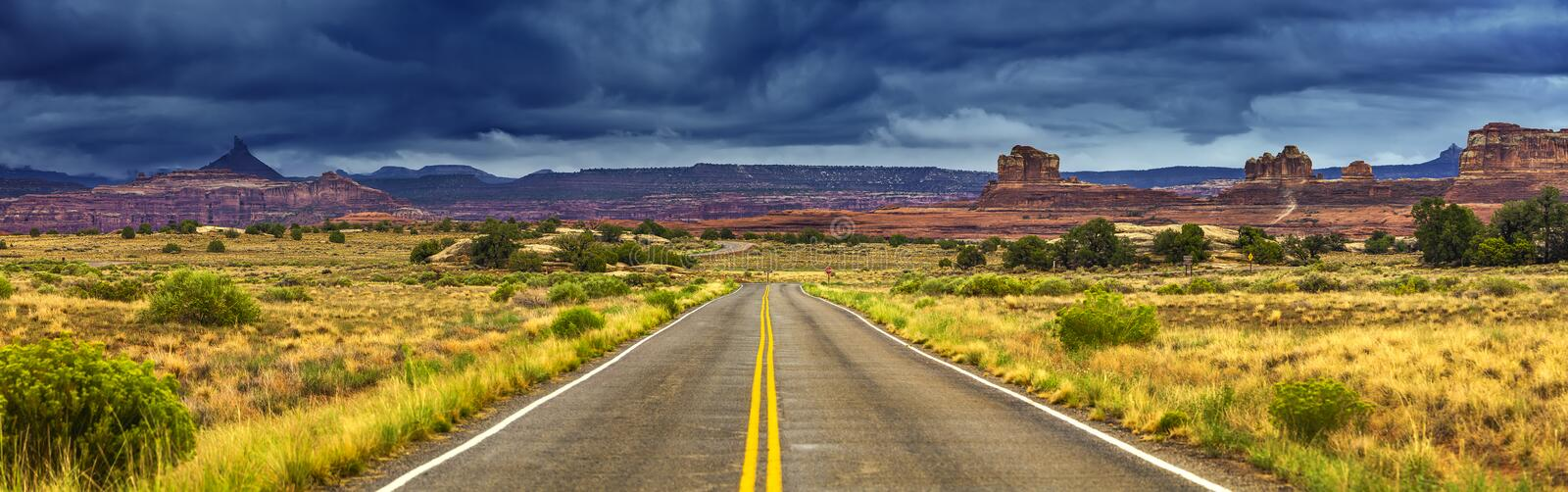 Download Road in the wild stock photo. Image of straight, grand - 26804278
