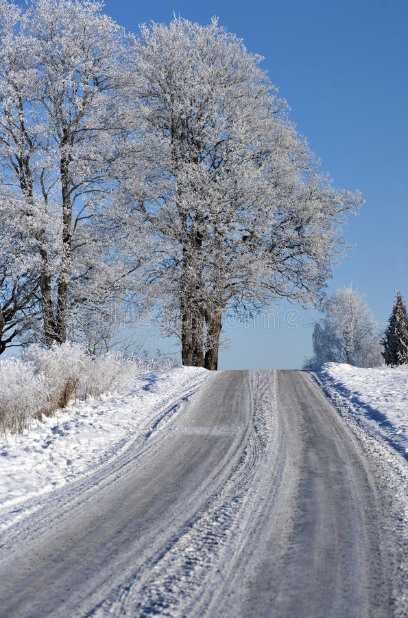 Download Road in winter landscape stock photo. Image of tree, rural - 28891870