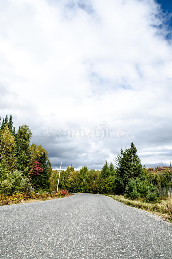 Download Road Through the Woods stock photo. Image of forest, outdoors - 26789324