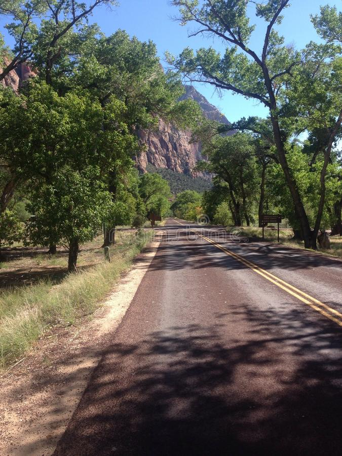 Road - Zion National park royalty free stock photography