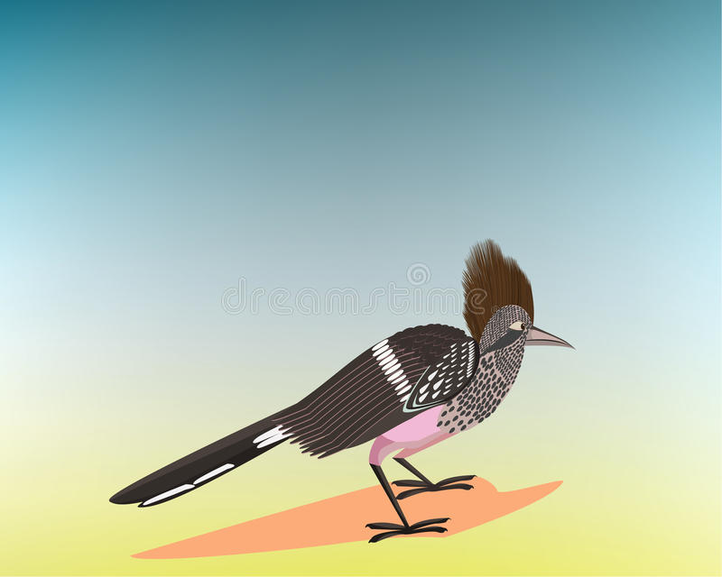 Roadrunner,. Roadrunner Running on the Road, All elements are in separate layers colour can be changed easily vector illustration