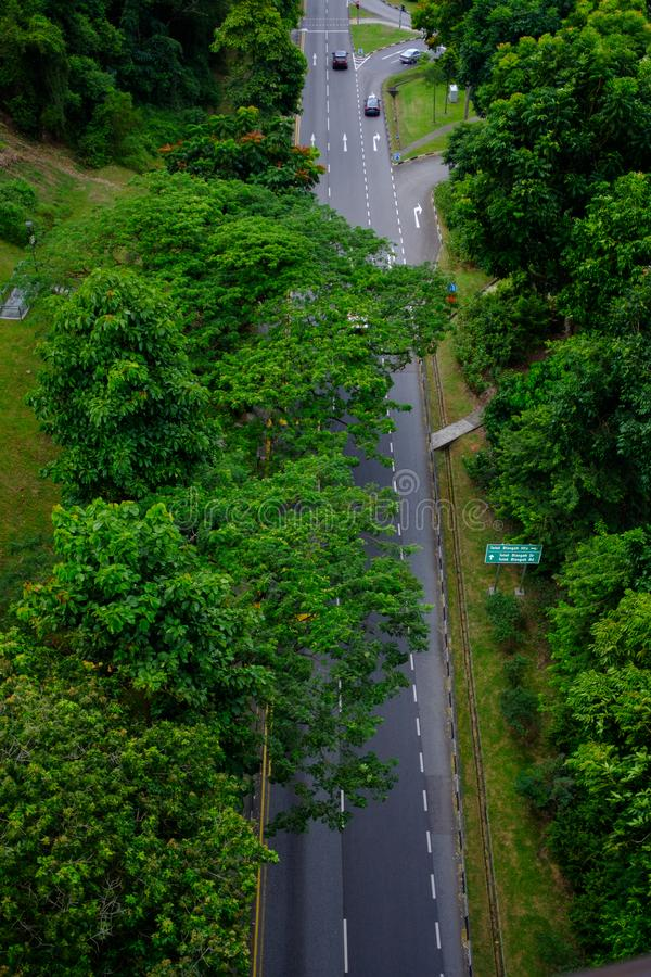 The roads in the country, Singapore with trees at the side of the road, shot from an angle high. royalty free stock image
