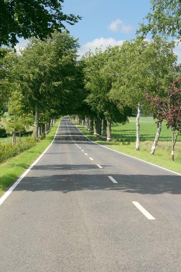 Roads Of Summer Stock Photos