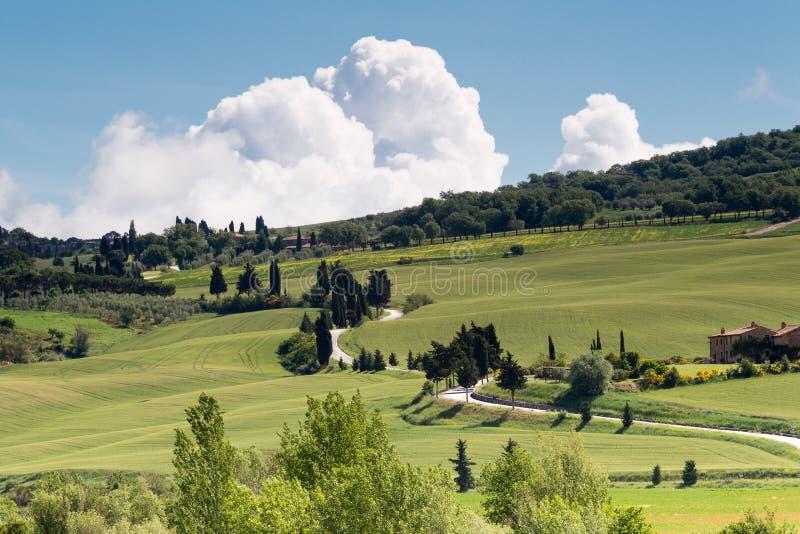 Download Roads of Tuscany stock photo. Image of castelluccio, scenic - 25456374