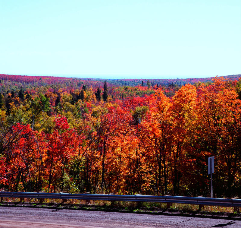Roadside Autumn Colors - Superior National Forest. Vibrant autumn hues are displayed along a scenic roadway in the Superior National Forest of Minnesota stock photography