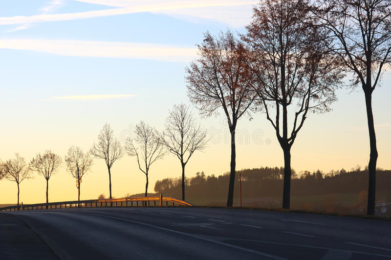Roadside autumn trees with guardrail at sunset. Row of trees in countryside along road at sunset stock photos