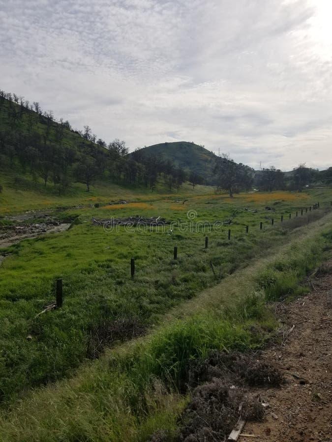 Roadside grass valley stock photo