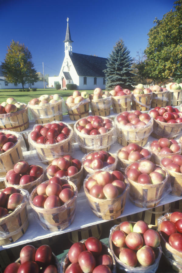Roadside vendor selling apples. In buckets, Clermont, NY stock images