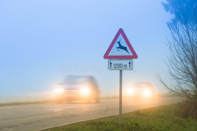 Roadsign скрещивания оленей стоковое фото rf