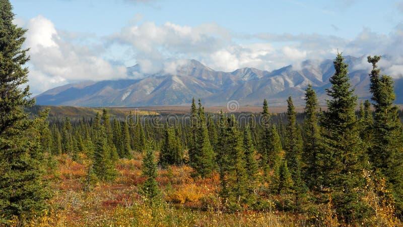 Roadtrip de Alaska fotografía de archivo