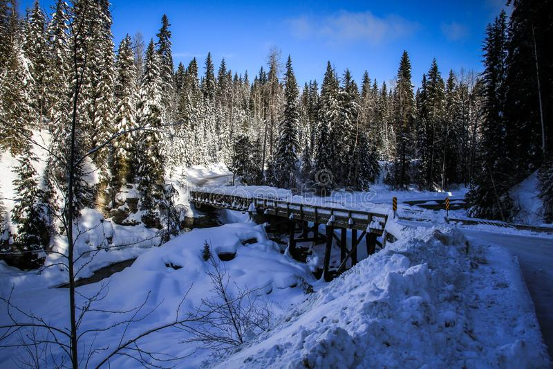 Roadtripping nelle montagne rocciose majestuous fra il diaspro ed Alberta su Alberta Highway 93, Alberta, Canada immagini stock libere da diritti