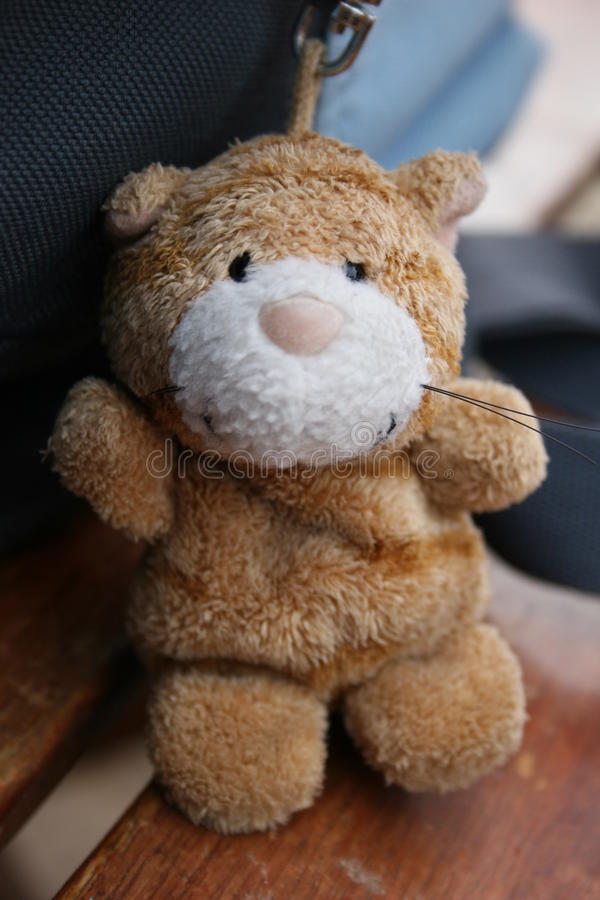 Roamantic toy bear stock images