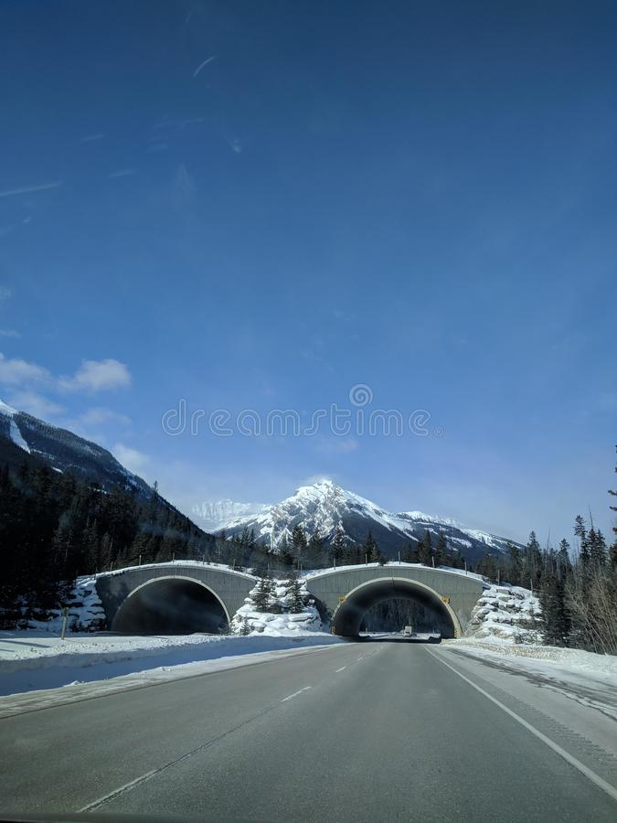 Roaming around Banff, Alberta, Calgary in winter. Weekend getaway to Banff National Park, Alberta. The road view was amazing royalty free stock photo