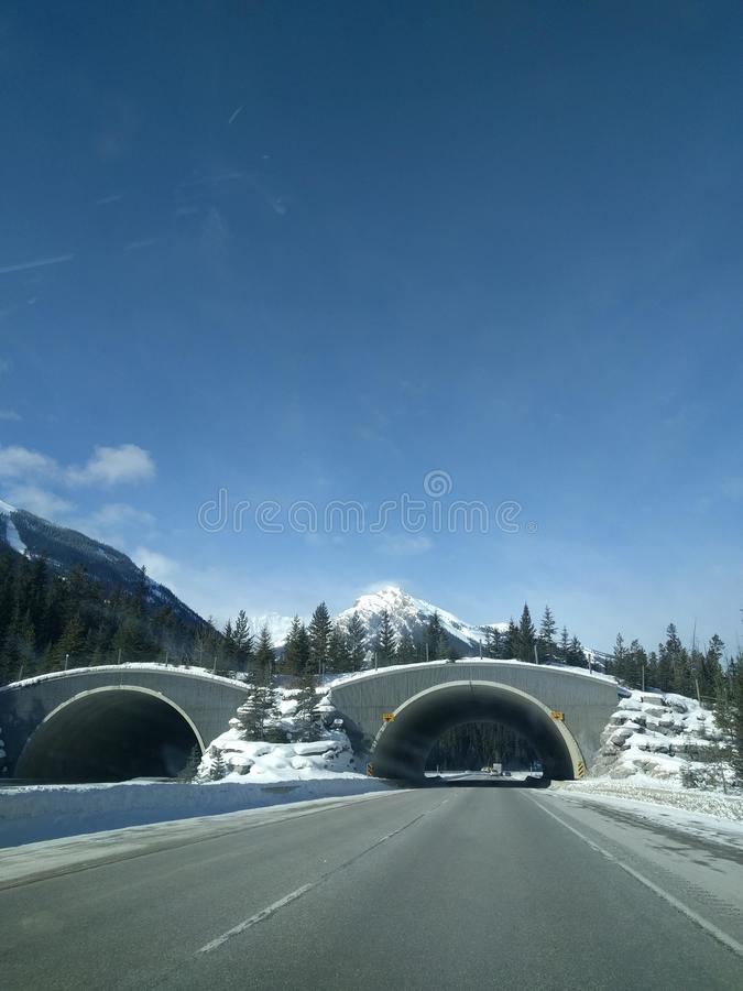 Roaming around Banff, Alberta, Calgary in winter. Weekend getaway to Banff National Park, Alberta. The road view was amazing stock photos