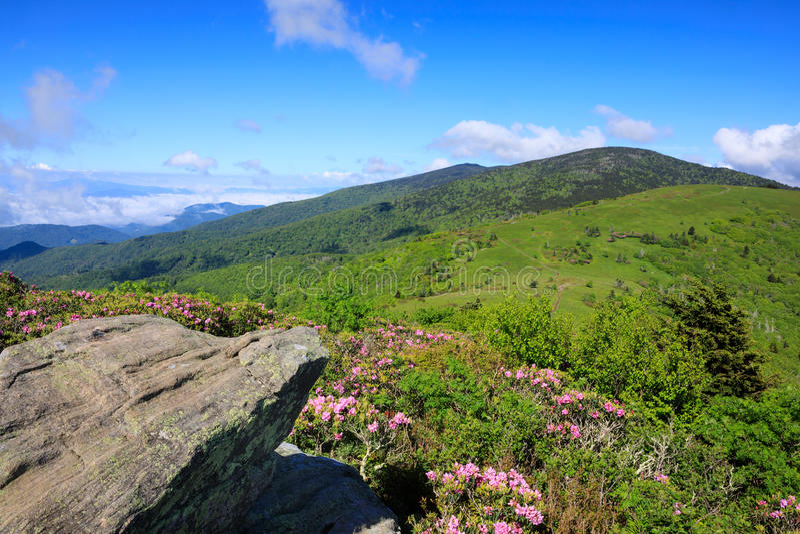 Roan Mountain Highlands North Carolina stock image