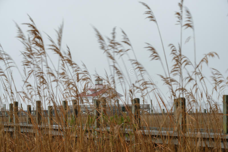 Roanoke Marsh Lighthouse through the deep grasses of the local m. Arshes royalty free stock photos