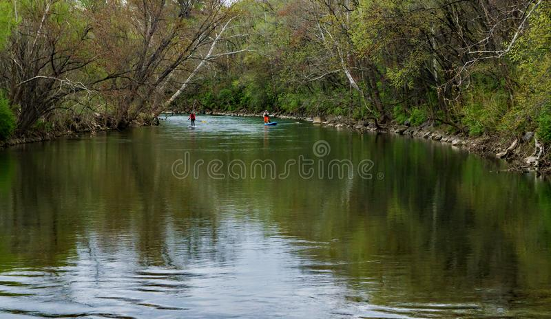 Two Paddle Boarders on the Roanoke River stock image