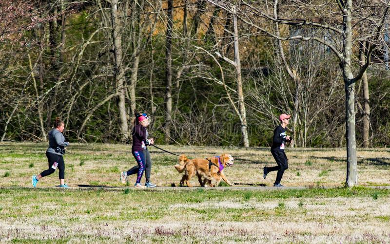 Runners With Their Dogs. Roanoke, VA – March 23rd: Runners with their dogs at the annual Roanoke Valley SPCA 5K Tail Chaser located along the Roanoke stock image