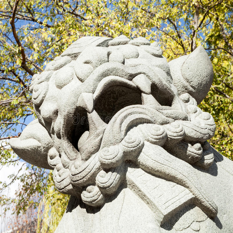 Roaring Male Chinese Lion Statue in Public Park Space. Roaring male Chinese guardian lion statue in public park space with green tree leaves and blue sky in the royalty free stock image