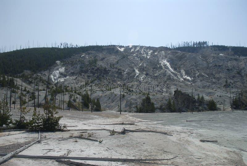 Download Roaring mountain stock photo. Image of scenic, caldera - 14609692