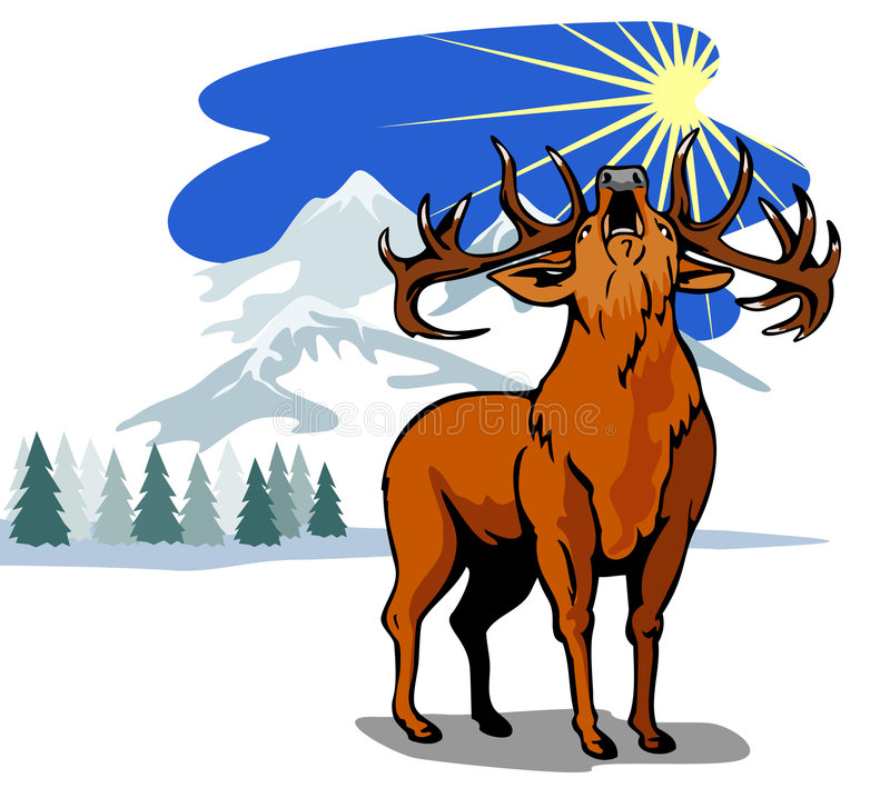 Download Roaring red deer in winter stock illustration. Image of animal - 3019088