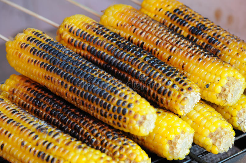 Download Roast corn stock image. Image of brown, colorful, cooked - 26328285