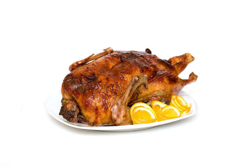 Roast duck. On a white background stock images