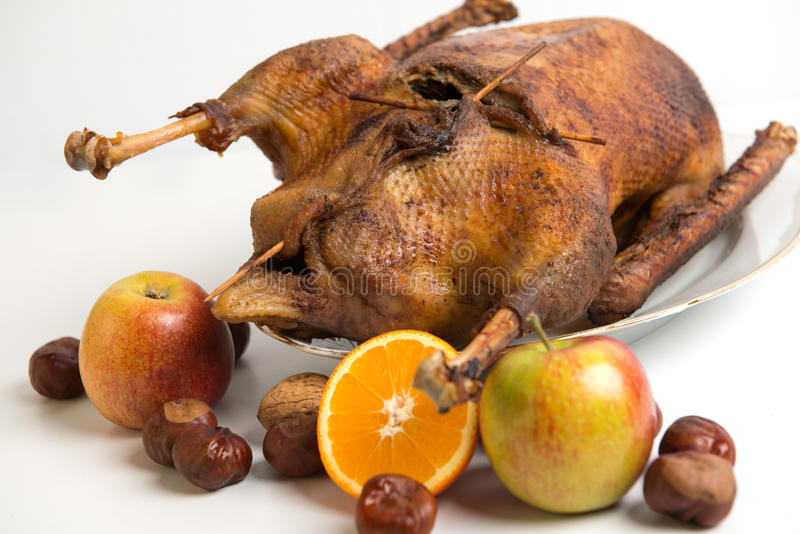 Roast goose. With orange, apple, nuts and chestnuts royalty free stock image