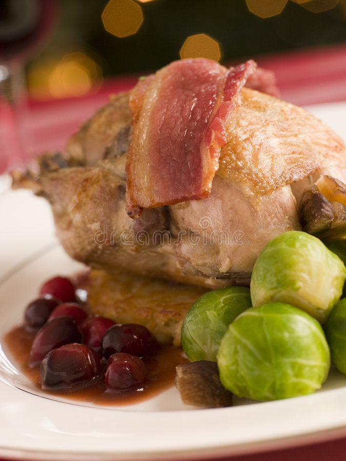 Roast Partridge Potato Cake Brussel Sprouts. And Cranberry royalty free stock image