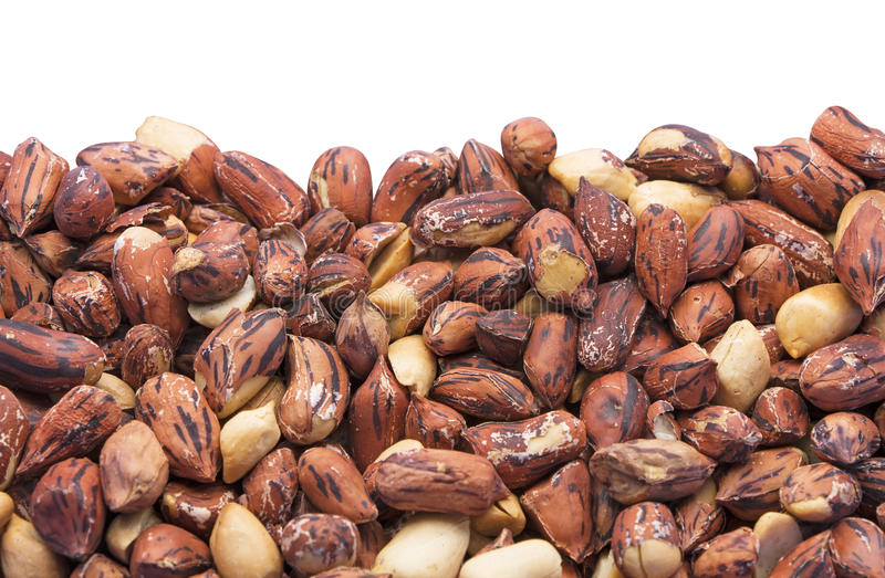 Roast Tiger Peanuts on White Background royalty free stock photography