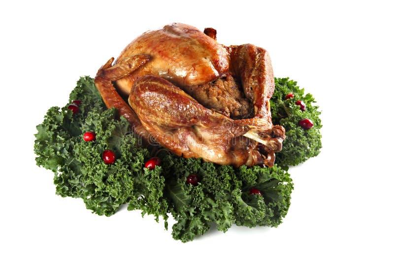 Roast turkey isolated on white background stock images