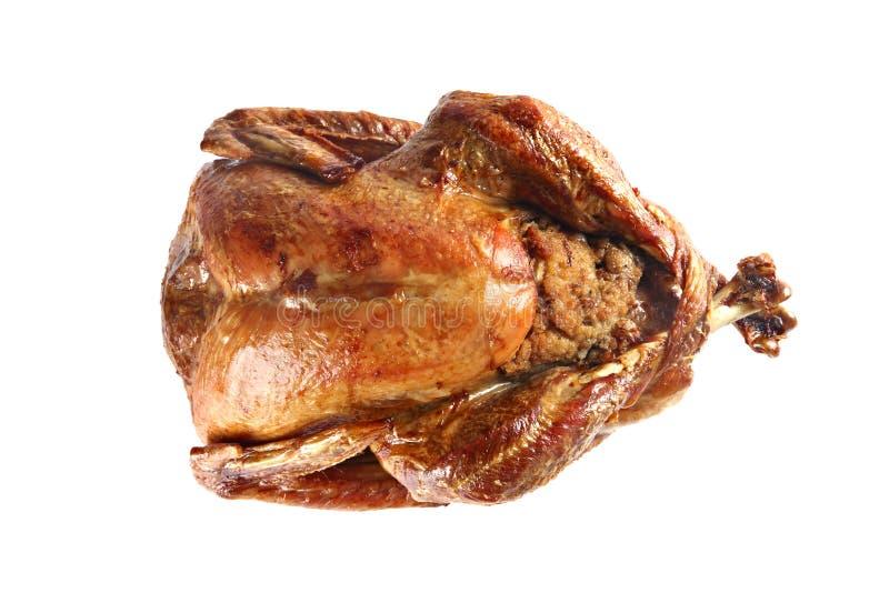 Roast turkey isolated on white background royalty free stock images