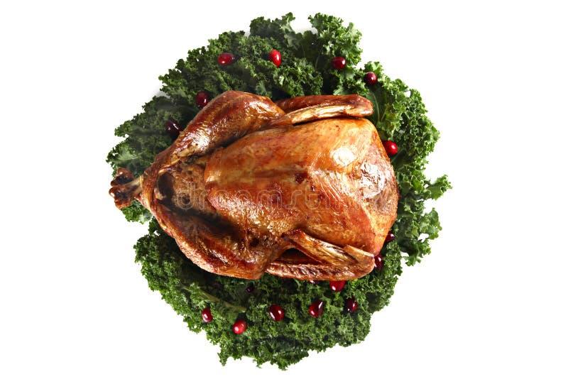 Roast turkey isolated on white background royalty free stock image