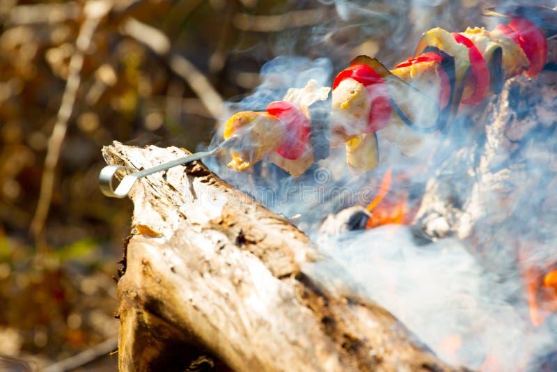 Roasted зажарило томат, баклажаны на ручке на открытом огне стоковое изображение rf