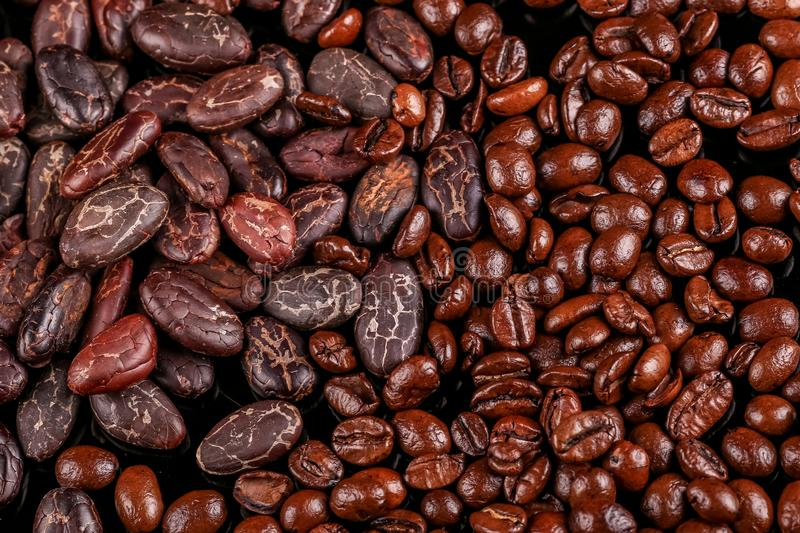 Roasted beans. Cocoa beans and coffee beans. Roasted beans. Cocoa beans and coffee beans isolated on black background stock photography