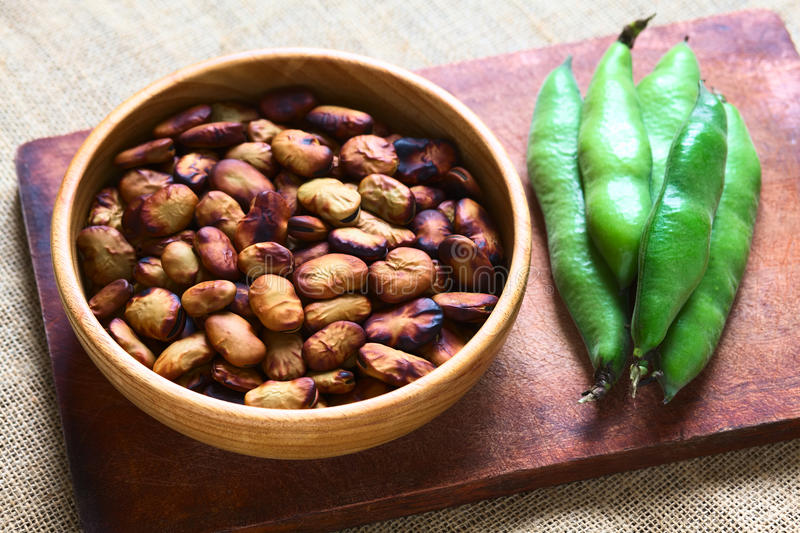 Roasted Broad Beans (lat. Vicia Faba). Eaten as snack in Bolivia in wooden bowl with fresh broad bean pods on the side, photographed with natural light ( stock photo