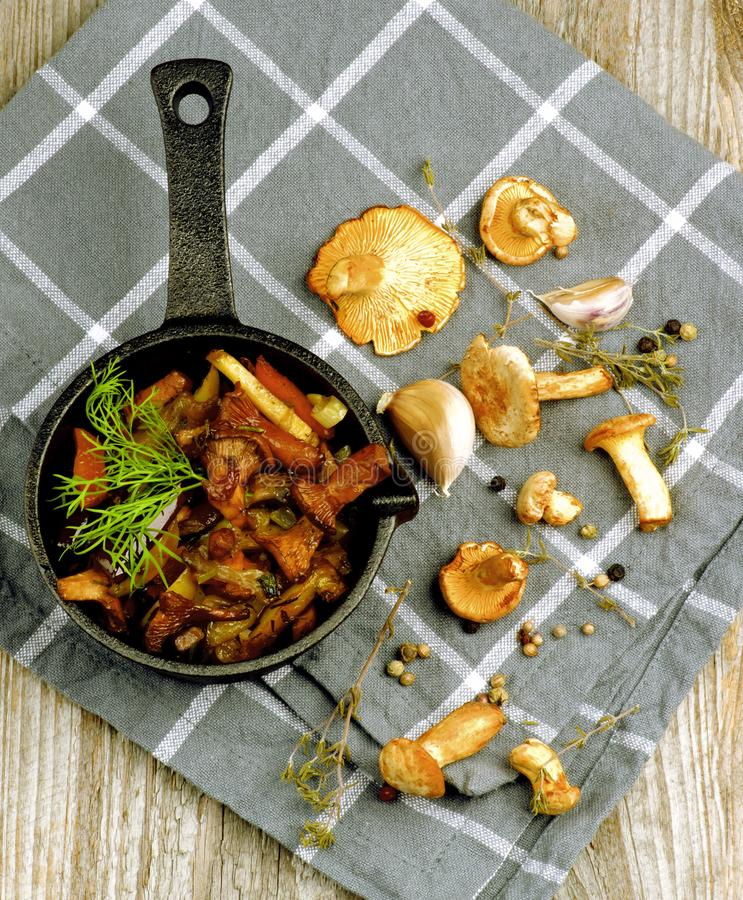 Roasted Chanterelles Ragout royalty free stock photography