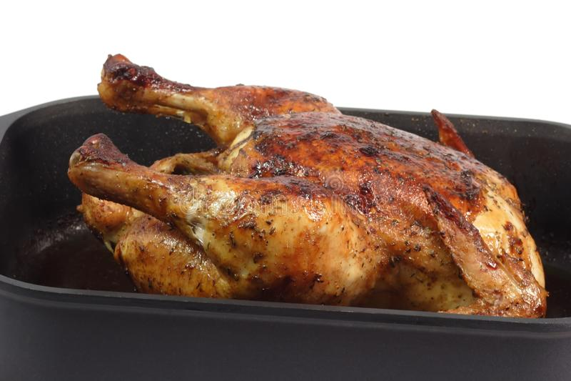 Roasted Chicken royalty free stock image