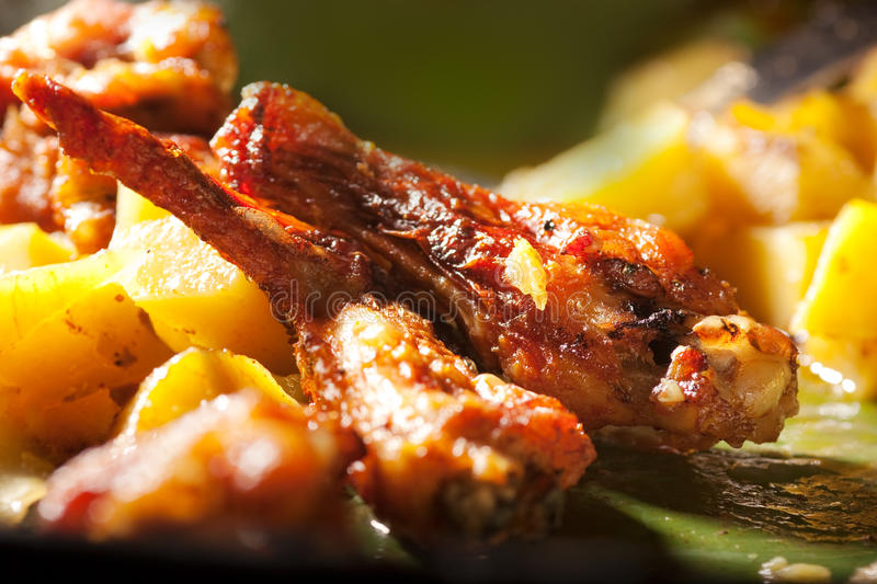 Download Roasted chicken wings stock photo. Image of spices, gourmet - 14022012