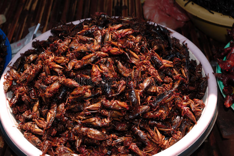 Roasted cockroaches