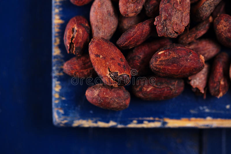 Download Roasted Cocoa Chocolate Beans On Dark Blue Wood Royalty Free Stock Photos - Image: 31194058