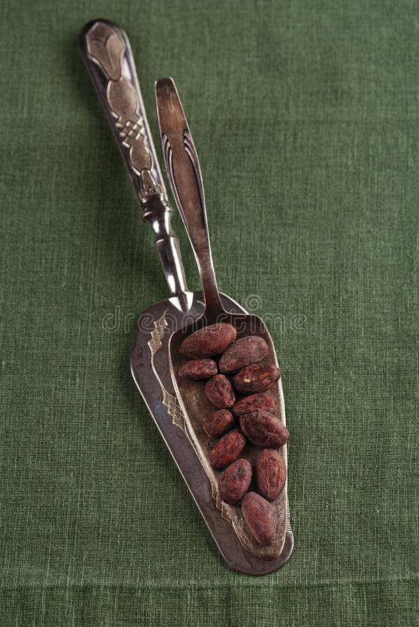 Download Roasted Cocoa Chocolate Beans On Silver Spoon And Linen Stock Image - Image: 30974805
