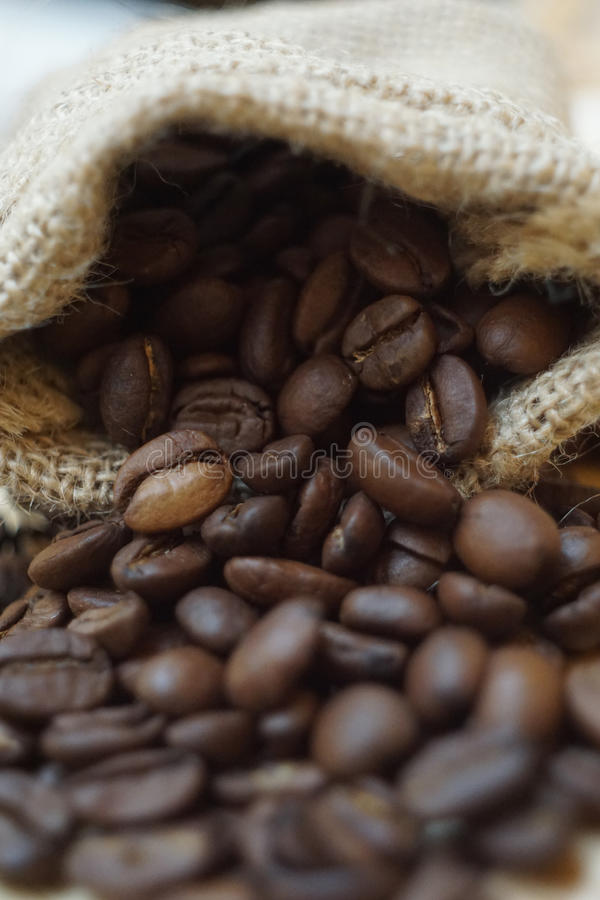 Roasted Coffee Bean royalty free stock image