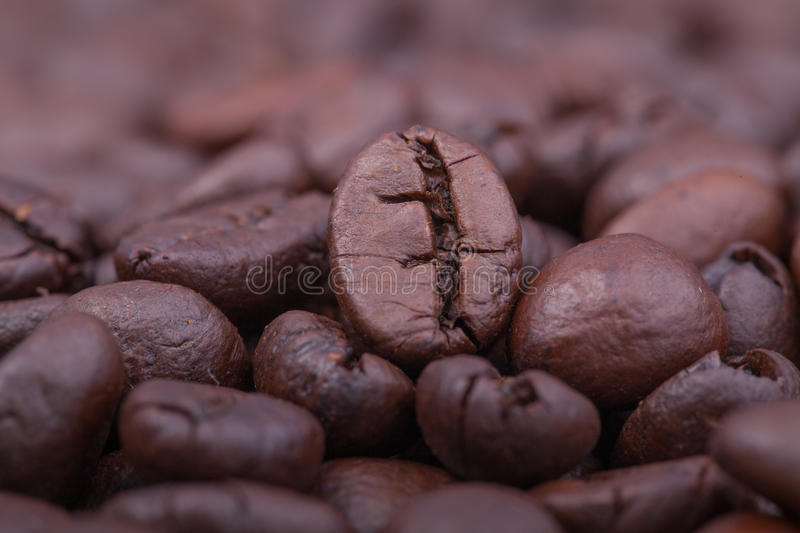 Download Roasted coffee stock photo. Image of group, large, bean - 37940106