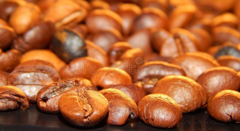 Download Roasted coffee in beans stock image. Image of black, frame - 83710123