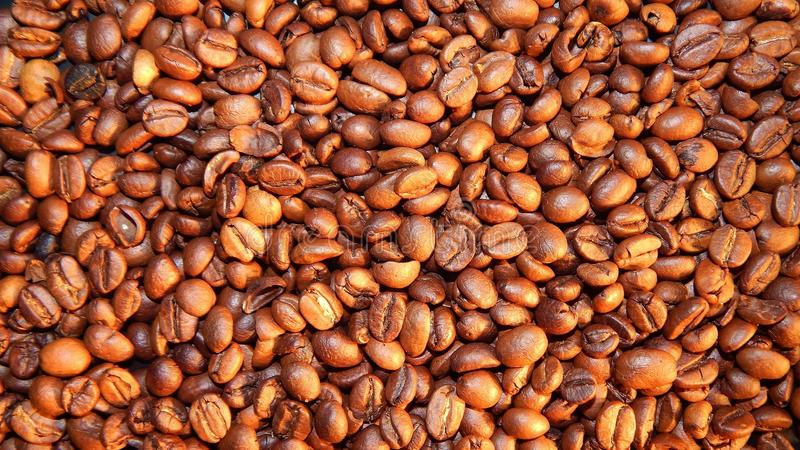 Download Roasted coffee in beans stock photo. Image of bean, food - 83710176