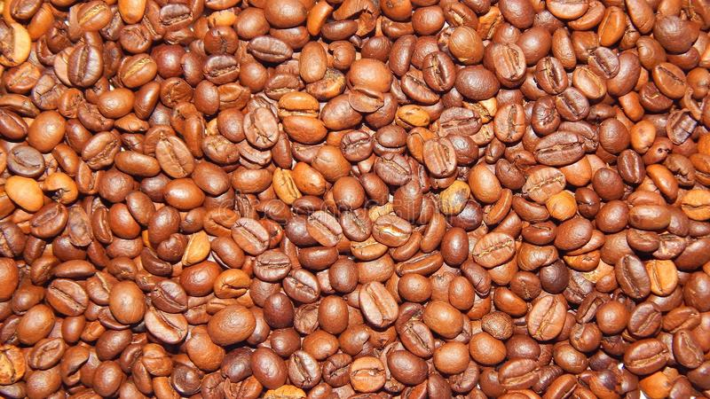 Download Roasted coffee in beans stock image. Image of brown, different - 83710889