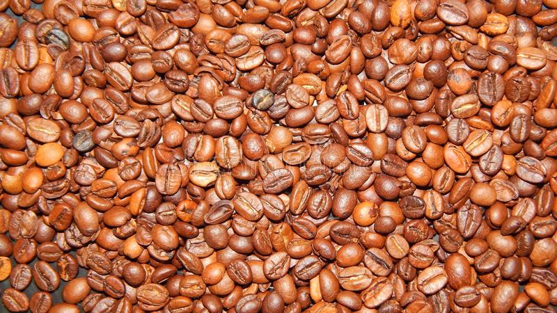 Download Roasted coffee in beans stock image. Image of background - 83711079